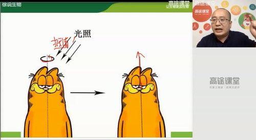 高途2020高二生物徐京秋季班(高清视频)百度网盘