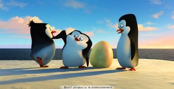 马达加斯加的企鹅第三季 迅雷下载