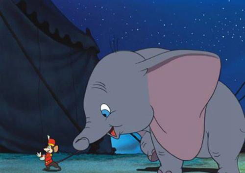 小飞象 小象丹波 迅雷下载