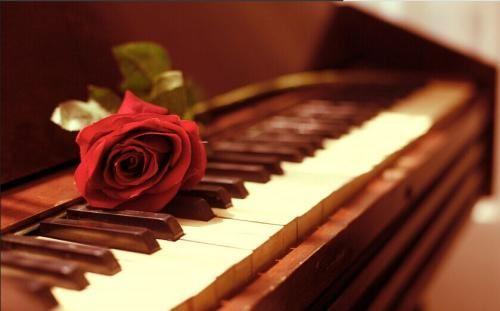 金鸽平:学钢琴必听20问(完结)mp3音频 百度网盘