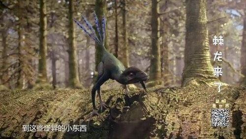 萌眼看世界之恐龙争霸(标清打包)百度网盘
