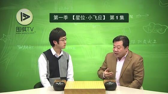 围棋TV网之猫哥讲定式(标清视频)百度网盘