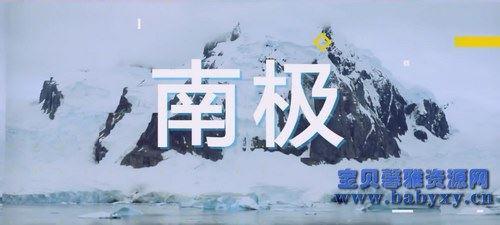 芝麻学社漫游世界之南极大探险(完结)(高清视频)百度网盘