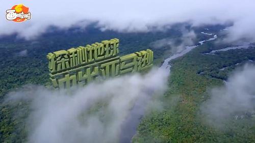 探秘亚马逊 小灯塔系列(视频完结)百度网盘