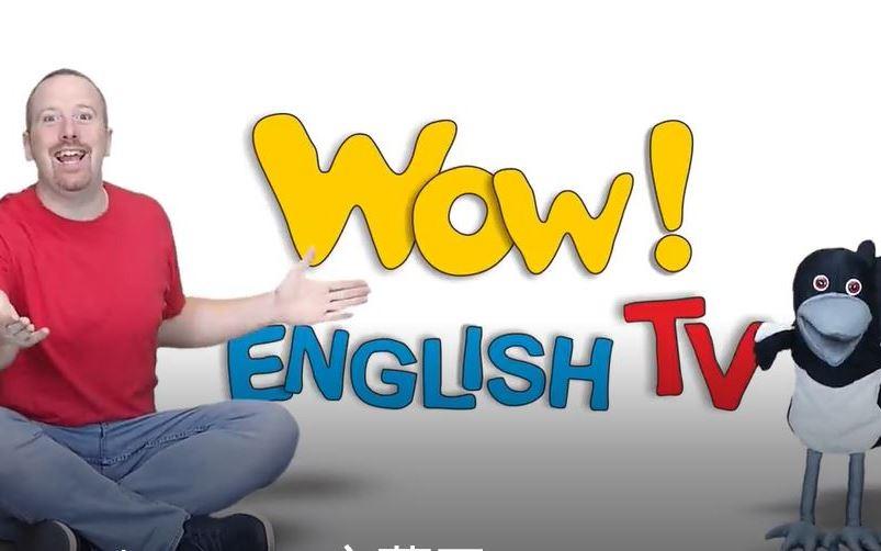 名师外教史蒂夫英语的教学高清视频124集 含文本 百度网盘