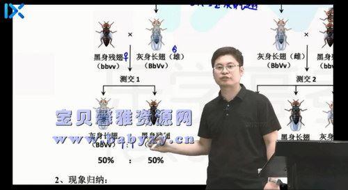 2021乐学高考任春磊生物第二阶段(15.3G高清视频)百度网盘