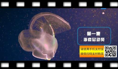 芝麻学社中国地理课(完结)(高清视频)百度网盘