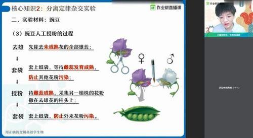 2021春季高一邓康尧生物尖端班(高清视频)百度网盘