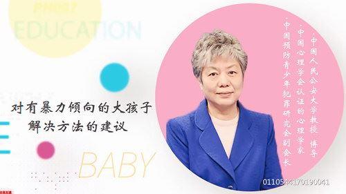 李玫瑾视频讲座全集 百度网盘