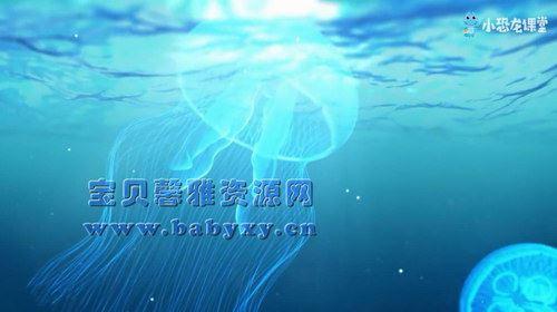 芝麻学社海洋探秘课(完结)(高清视频)百度网盘