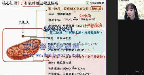 2021作业帮高二寒假段瑞莹生物尖端班(10.3G高清视频)百度网盘