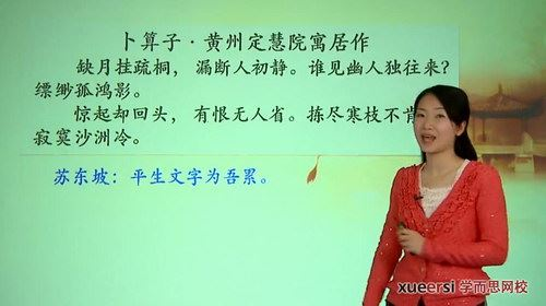 学而思大语文学堂系列—穿越时空对话:苏轼来了(高清视频)百度网盘
