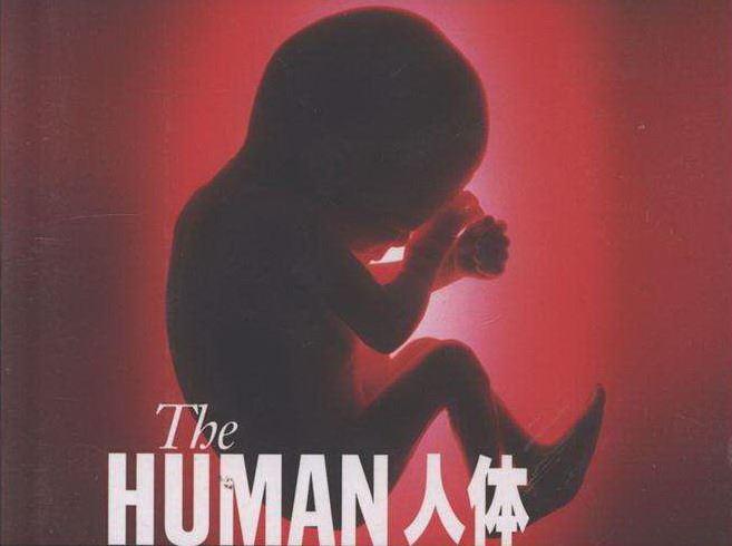 BBC.Inside the Human Body【人体奥秘】2011 百度盘下载