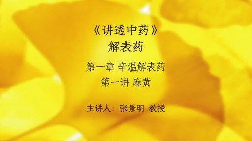 张景明讲透中药(上)(71.2G高清视频)百度网盘