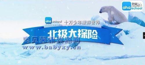 芝麻学社漫游世界之北极大冒险(完结)(高清视频)百度网盘