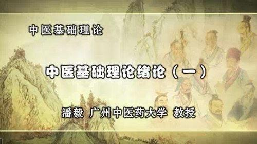 潘毅中医基础理论(全111集)(标清视频)百度网盘
