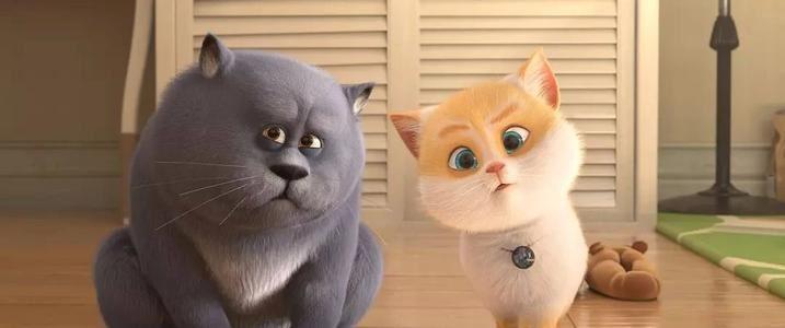 猫与桃花源 迅雷下载