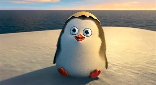马达加斯加-企鹅大行动/马达加斯加企鹅:行动 迅雷下载
