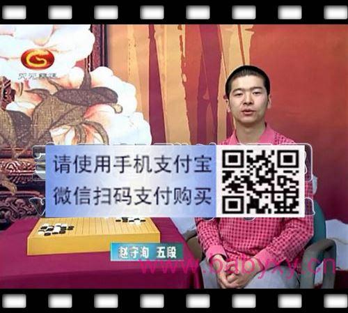 赵守浔围棋对杀技巧(60集完整版)(标清视频)百度网盘